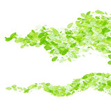Vector green leaf wave background