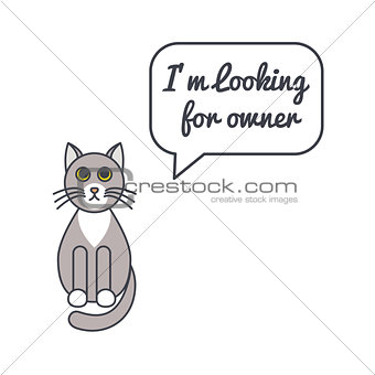 Gray cat with speech bubble and saying