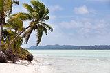 gorgeous tropical island