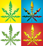 textured marijuana cannabis leaf symbol vector illustration