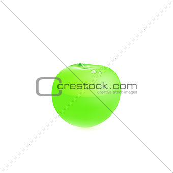 Green apple. Vector