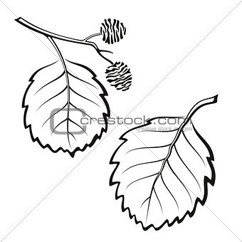 Alder Leaves, Pictogram Set