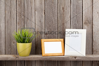 Blank photo frames and plant