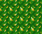 bananas pattern green background