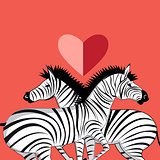 lovers of zebras