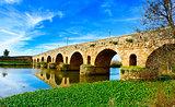 Puente Romano bridge in Merida, Spain