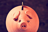 coin in a piggy bank, filtered
