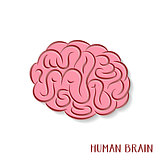 Abstract human brain icon