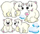 Polar bears theme collection 1