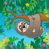 Sloth on branch theme image 2