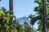 Christ the Redeemer from a distance