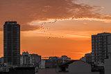 Sunrise - Rio de Janeiro