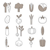 Simple Vegetable Set. Handdrawn Illustration
