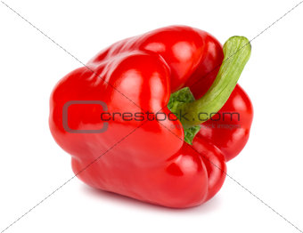 Single red sweet pepper