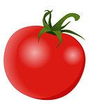 Red fresh tomato