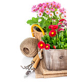 Garden flowers in wooden basket with garden tools