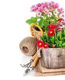Garden flowers in wooden basket with garden tools