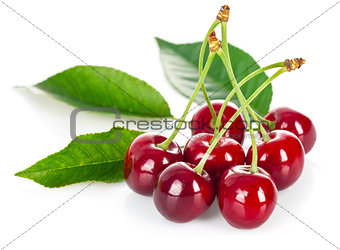Fresh cherries with green leaves