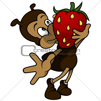 Ant Holding Strawberry