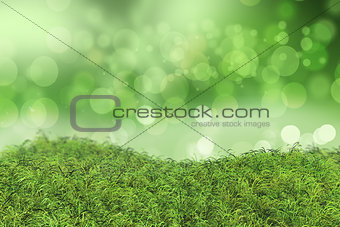 Green grass on a bokeh lights background