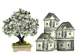 Three houses from dollars banknotes and money tree