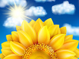 Sunflower against blue sky. EPS 10