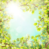 Season branches with fresh green leaves. EPS 10