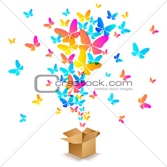 box with colorful butterflies