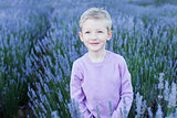 boy in lavender field