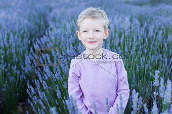 boy in lavender field