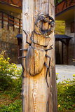woodcarving bug on wood background, beetle Lucanus Cervus, Stag beetle.
