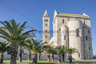Cathedral of Trani with palm trees in front