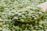 Natural organic green lentils for healthy food