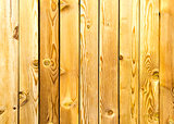 Old wood planks for background
