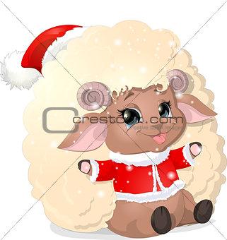 beautiful sheep on a white background
