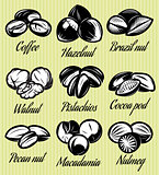 set of symbols patterns different seeds, nuts, fruits