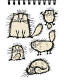 Fluffy cats collection, sketch for your design