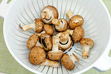 Crimini Mushrooms in a Colander