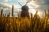 Windmill in the field in sunset