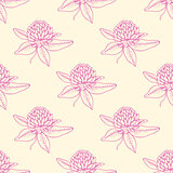 Pattern with pink clover flowers