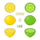 Vector lemon and lime illustrations