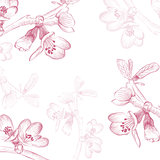 Vintage Cherry Blossom Flower Background