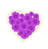 Vector flowers violets