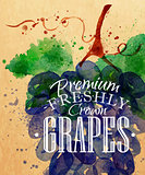 Poster grapes