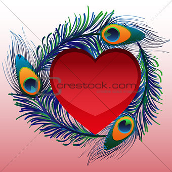 Beautiful heart with peacock feathers