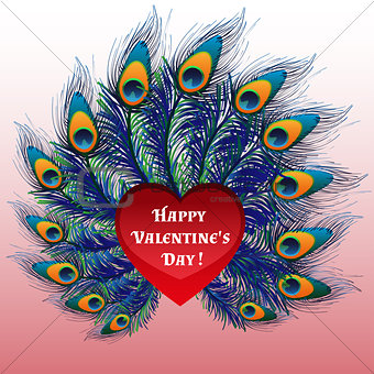 Beautiful Valentines day heart with peacock feathers