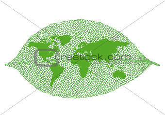 Green leaf world map, vector