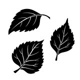 Birch Leaves, Pictogram Set