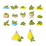 Olives icons set with tree oil branch leaf isolated vector