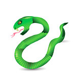 Cartoon Green Snakes